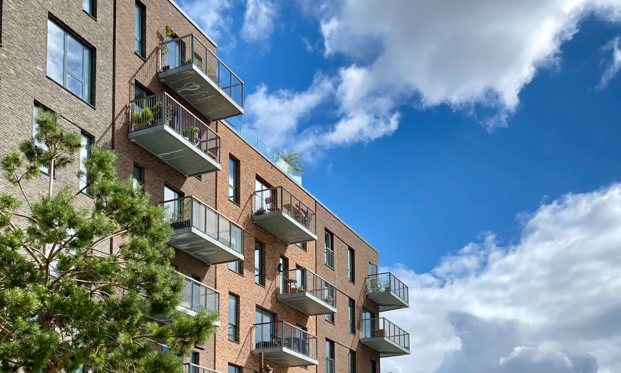 questions to ask rent applicants